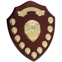 Triumph14 Gold Annual Shield</br>W283G